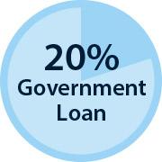 20% government loan diagram