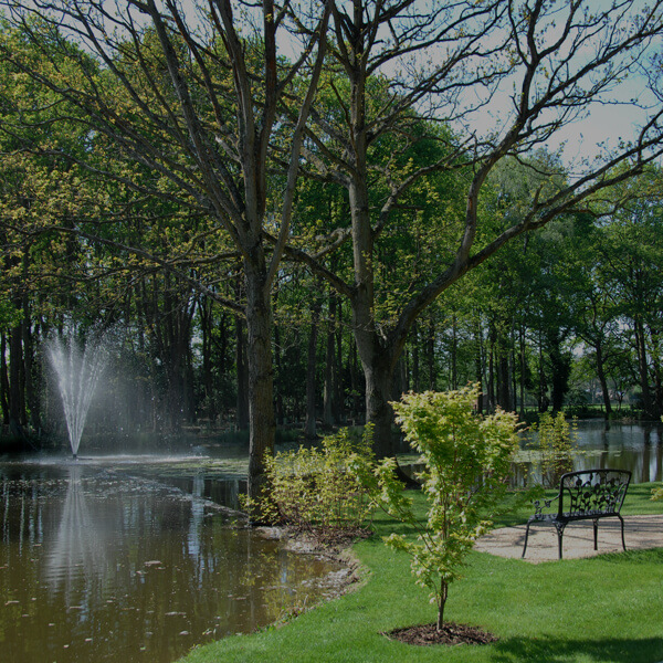 Gardens with trees lake and fountain Houses for sale