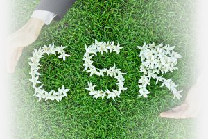 corporate responsibility - Mobile CSR on grass